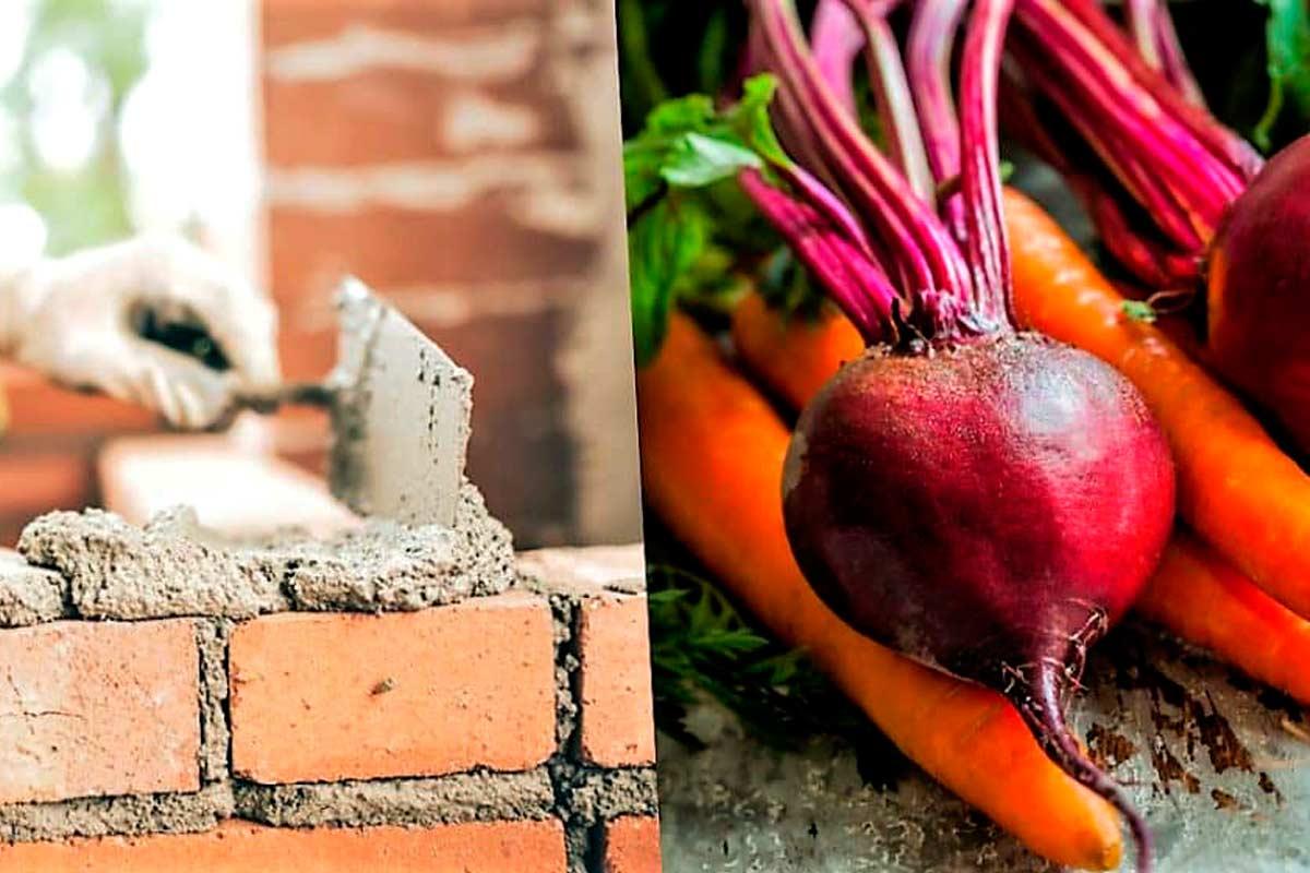 Hormigón Zanahoria